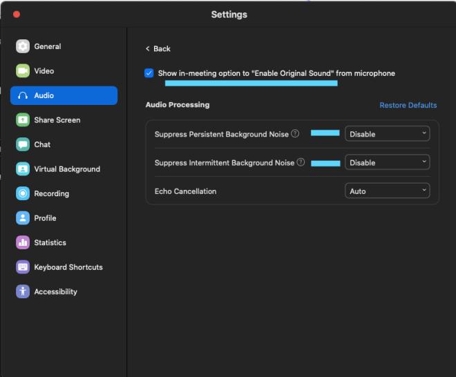 Zoom settings - Audio Advanced