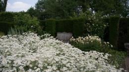 Sissinghurst 9