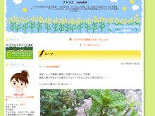 お菓子教室&食育コミュニティ キッチンスタジオ「横浜ミサリングファクトリー」-nonoka