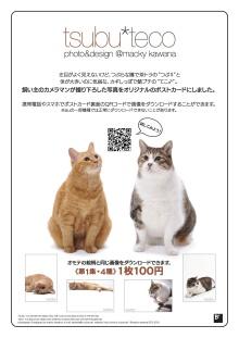 $キッチンスタジオ◆横浜ミサリングファクトリー-つぶてこ