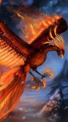 49 Phoenix Mobile Wallpapers Mobile Abyss