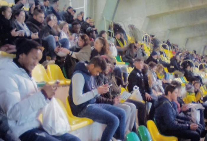 Match Nantes la Beaujoire 2017