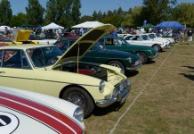 MGB GTs at the Columbia River Classic & British Field Meet in Portland