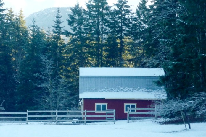 My MGB GT lives in this snow covered barn