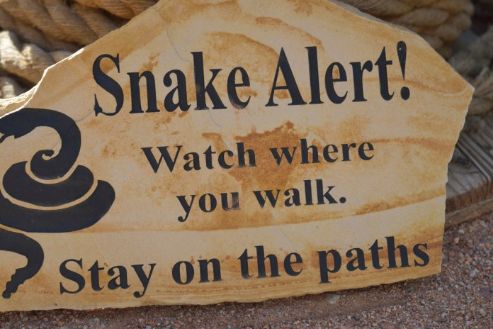 Snake Alert! Watch where you walk. Stay on the paths.