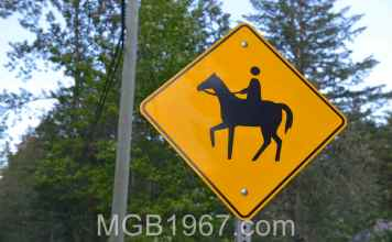 Strange horse and rider sign