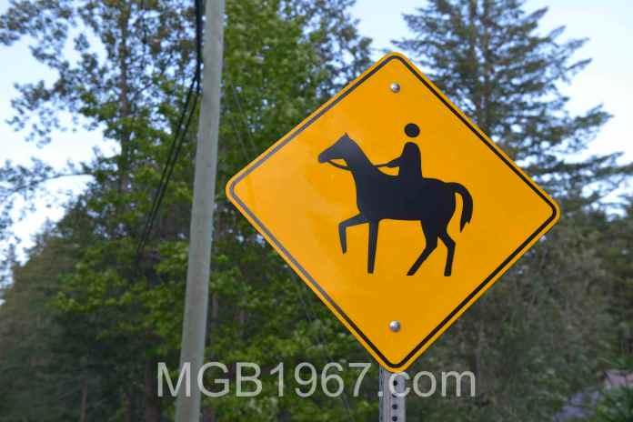 Strange horse and rider sign