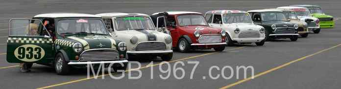 A school of Minis