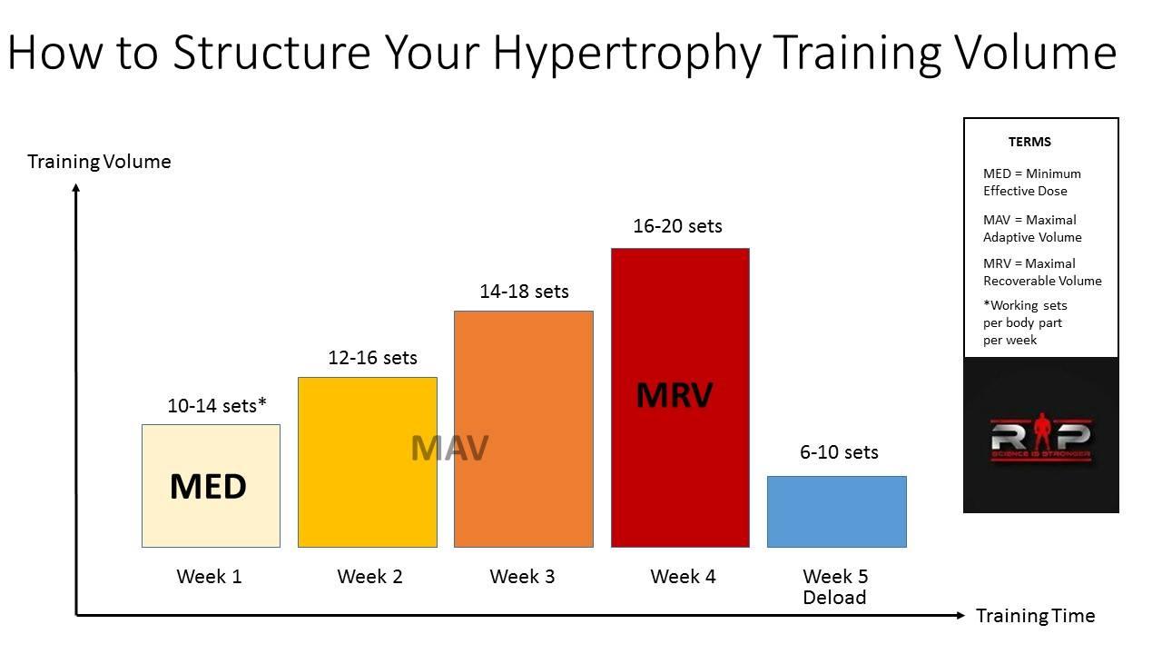 el mejor ejercicio para hipertrofia muscular