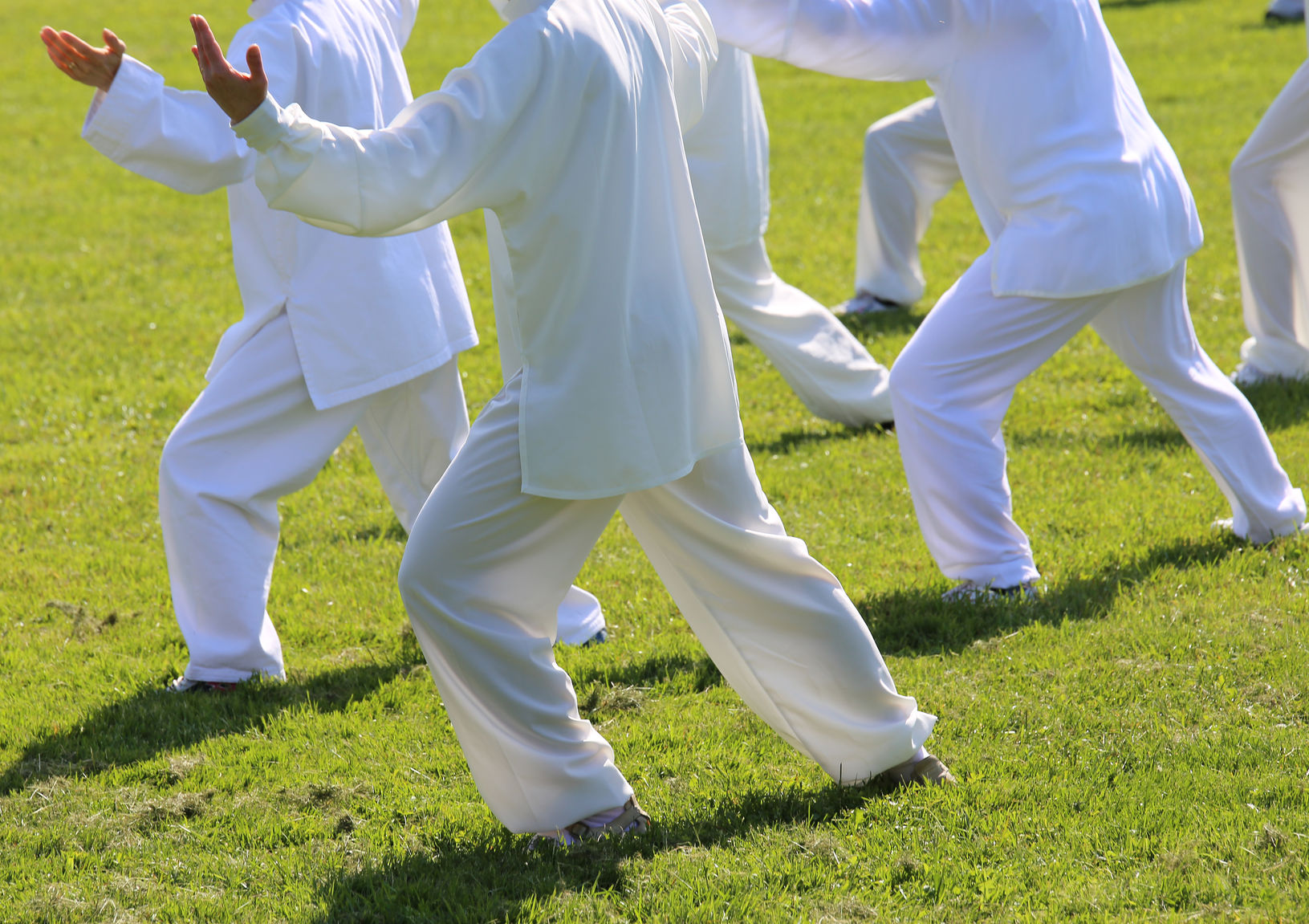 59408615 - people fans of martial arts with shiny white silk dress during the concentration exercises and relaxation in the large park