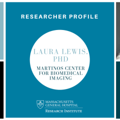 Researcher profile Lewis