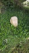 Stone Easter Island Head