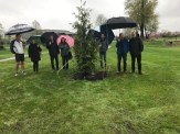 Alec Clarke's memorial tree planing