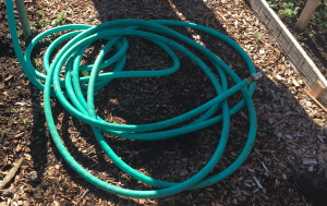 Hose in community garden in Deschutes, OR.