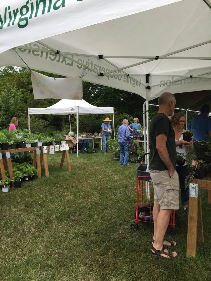 Shoppers at Plant Sale