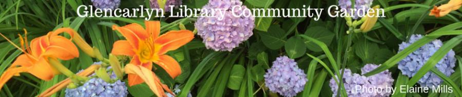 Flowers at Glencarlyn Library Community Garden