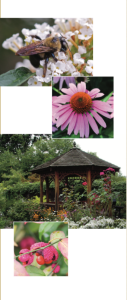GC Library Garden Brochure
