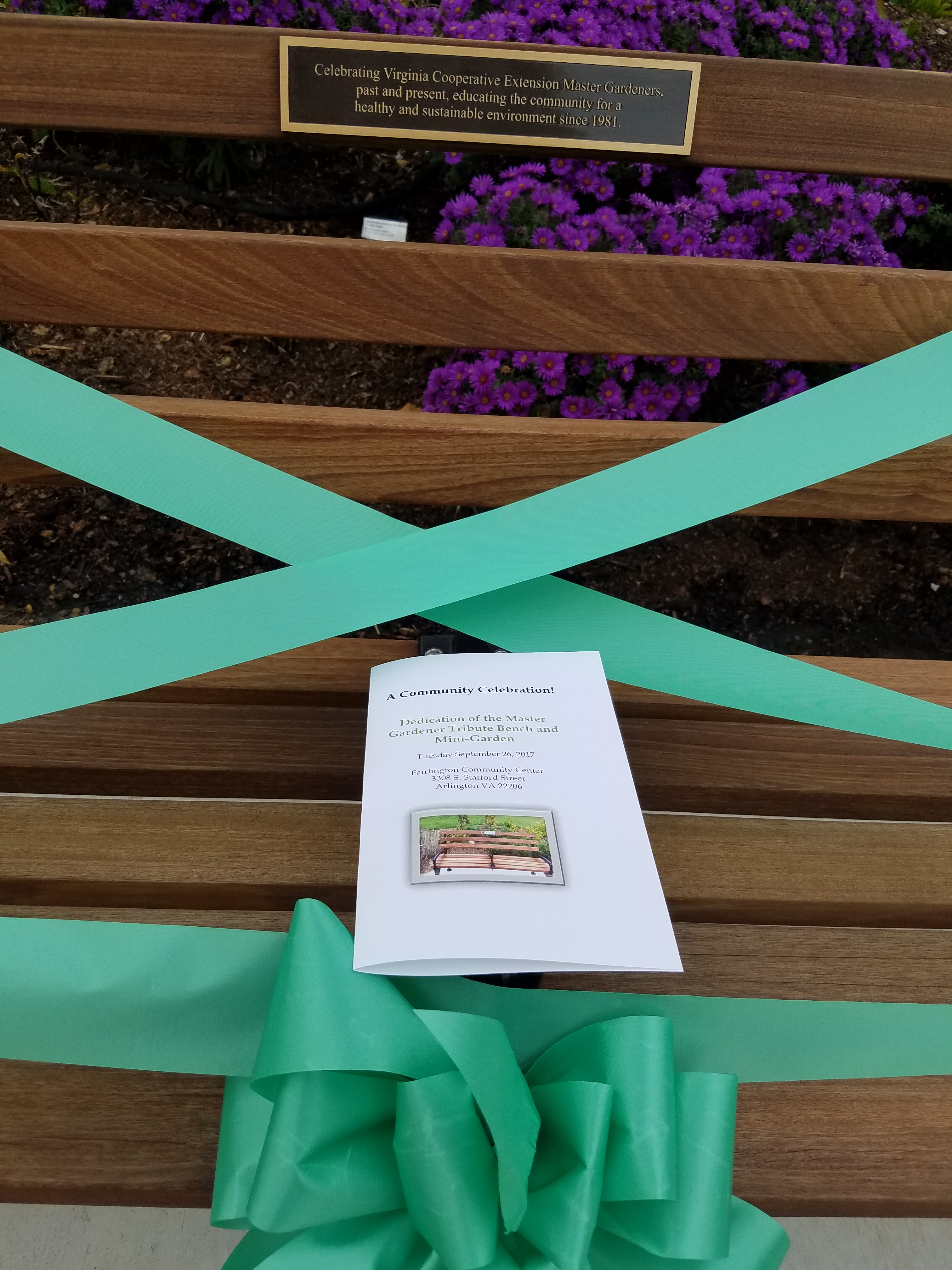 Close-up of Beribboned Tribute Bench with Program
