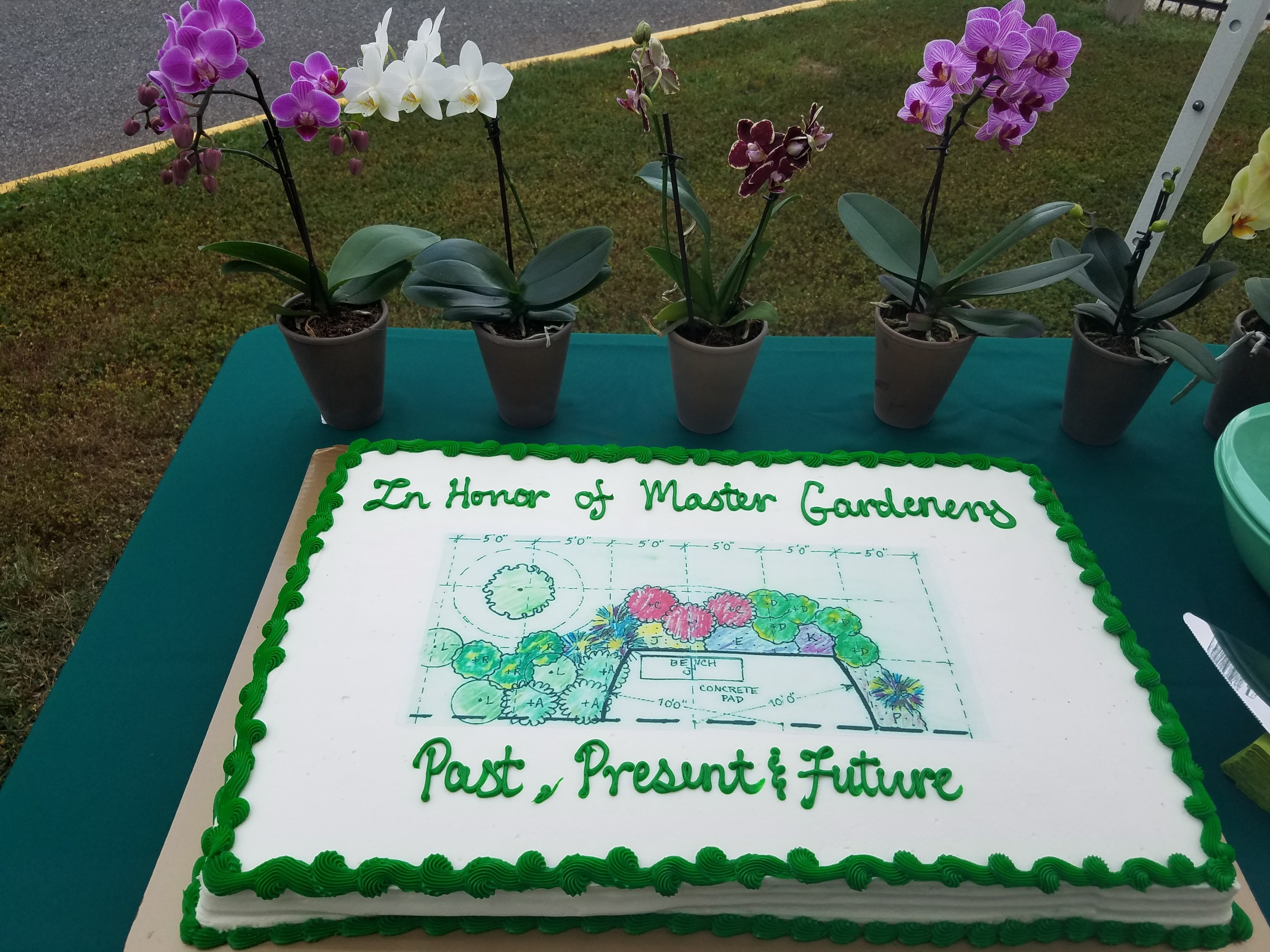 Sheet cake with garden plan on refreshments table