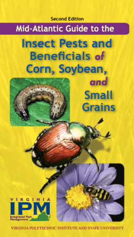 Mid-Atlantic Guide To the Insect Pests & Beneficials Of Corn, Soybean, and Small Grains