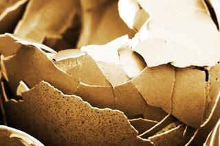 broken Egghshells