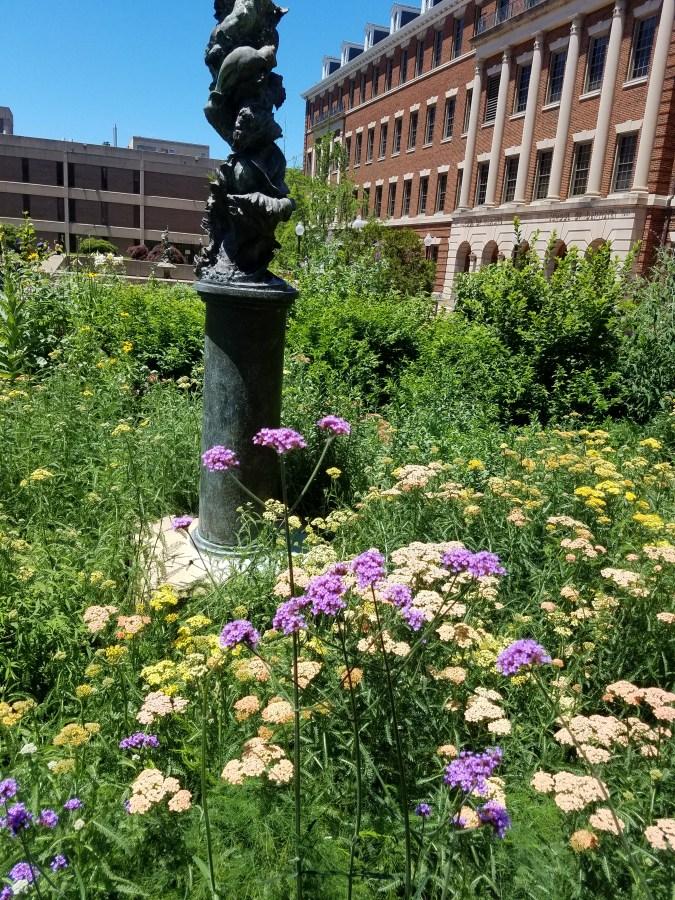 Herb Garden - Georgetown
