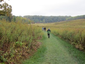 Mown paths lead visitors on hikes of various lengths through the meadow. Photo ©2014 Elaine Mills