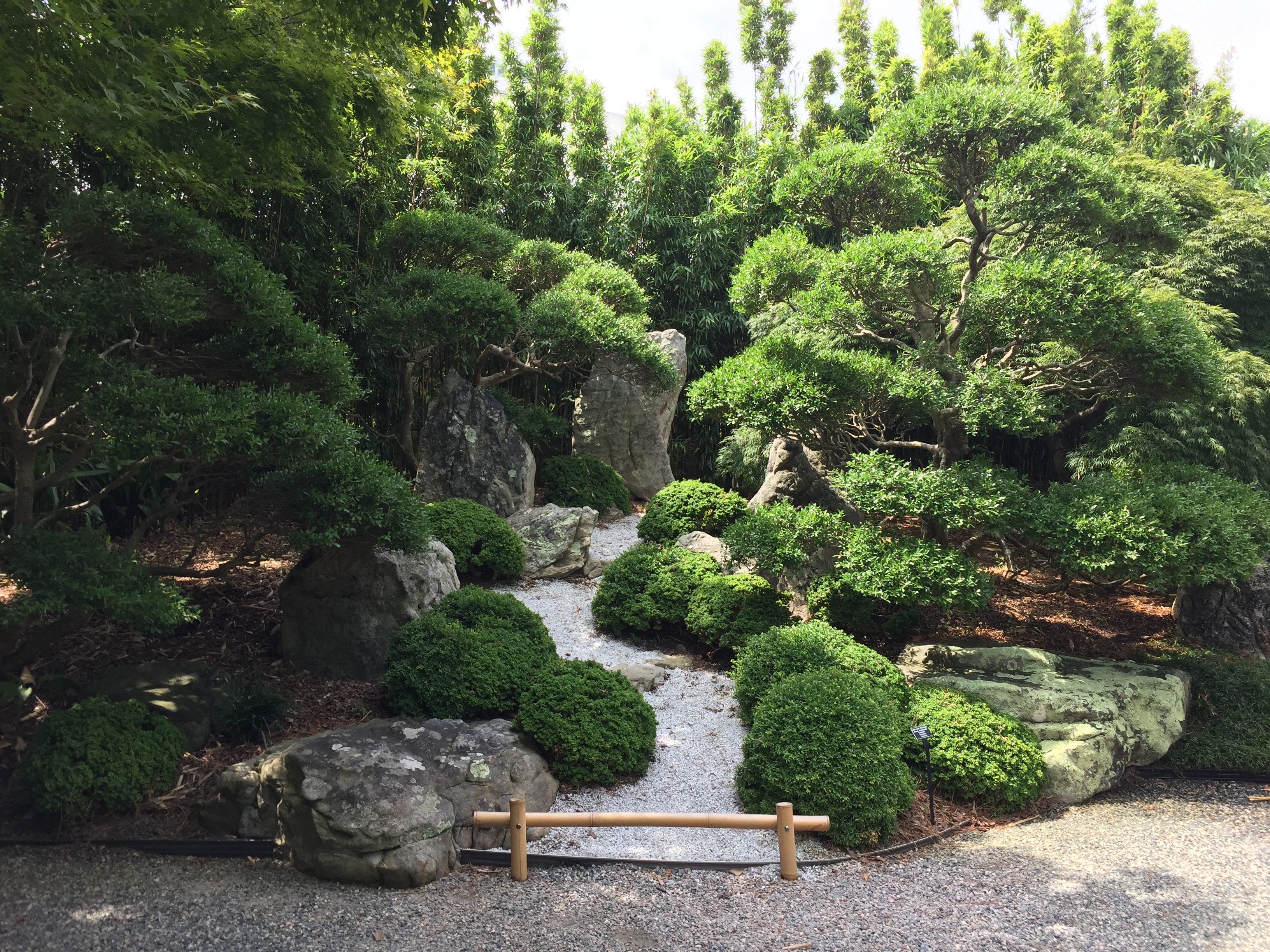 Evergreen plants are combined with stones in the Japanese Garden. Photo © 2018 Elaine Mills.