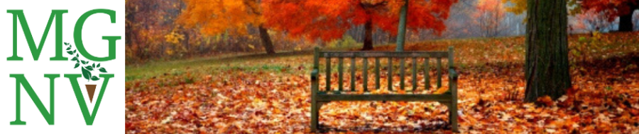 Bench with falls leaves