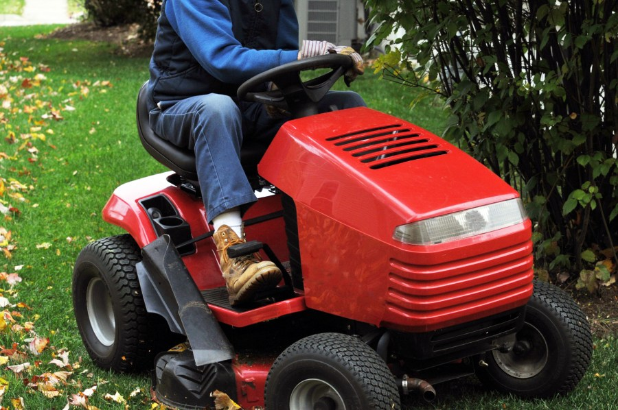 Both push mowers and riding mowers can severely damage roots and bark when they get too close to trees and shrubs. Photo by Linnaea Mallette, Public Domain Pictures