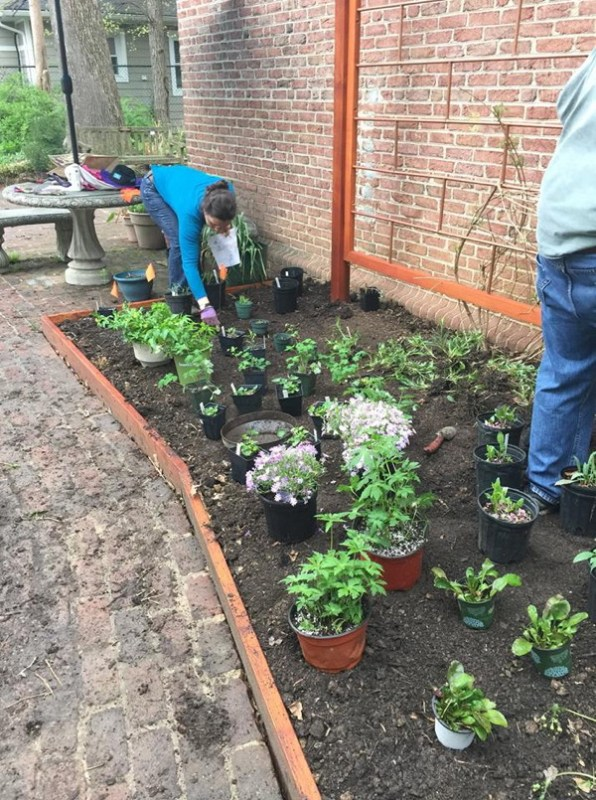 Ana Karla refines placement of plants as Shrive begins digging.