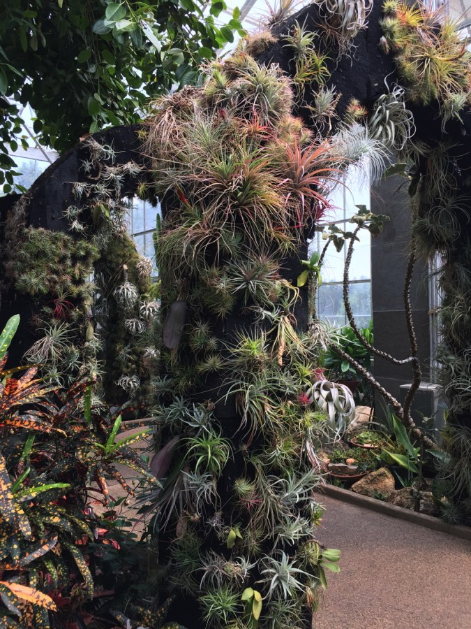 The Orchid Conservatory, a five-story glass house, displays a variety of tropical plants.