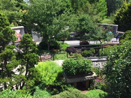 The Bonsai Garden integrates its displays of 50 bonsai specimens into a landscaped hillside setting.