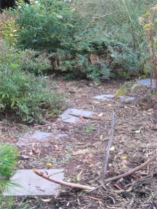 New stepping stone path in the Berm Garden.Photo © 2019 by Christa Watters