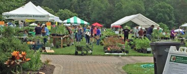 MGNV_Plant_Sale_At_Green_Spring_Gardens_2019