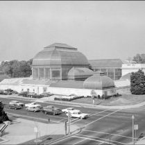 Conservatory around 1970 (Photo: Architect of the Capitol)