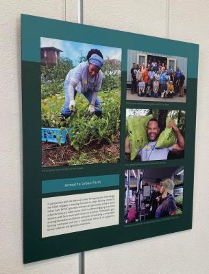 Training for urban farming