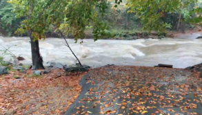 Four Mile Run flooding in Arlington, 2019 Photo © Alyssa Ford Morel