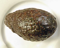The lenticels (brown spots) on a ripe 'Haas' avocado. Photo © Christa Watters
