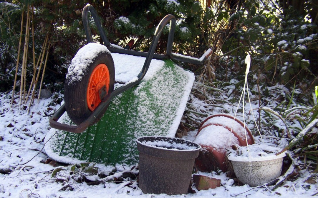 5 Tips for Getting your Garden Winter Ready