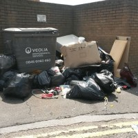 Rats and mice like poor waste management
