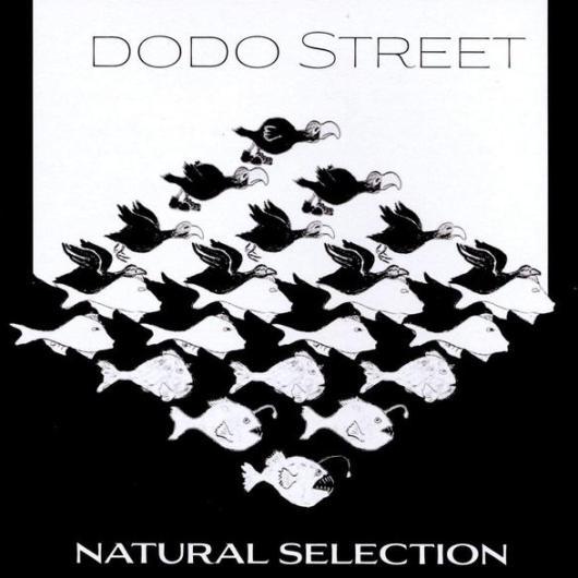 British Accordionist Murray Grainger with Dodo Street Band