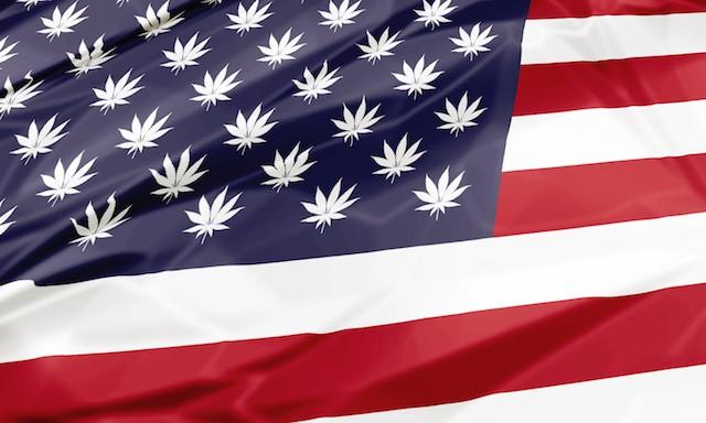 Marijuana, Blumenauer, legalization, legal