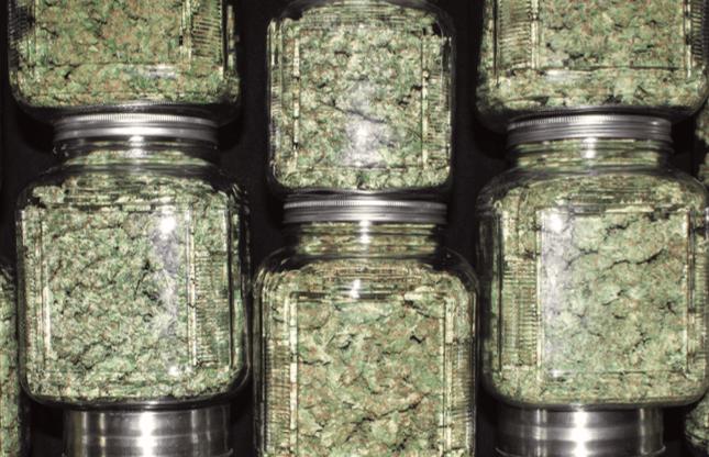 Budtenders, cannabis