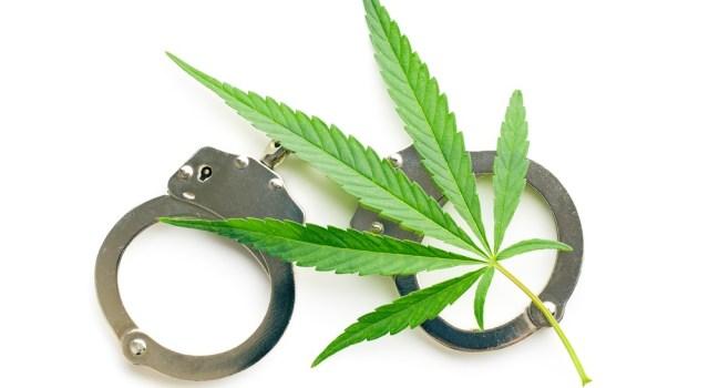 Jeff Sessions, War on Drugs, Cannabis, marijuana, legal, news