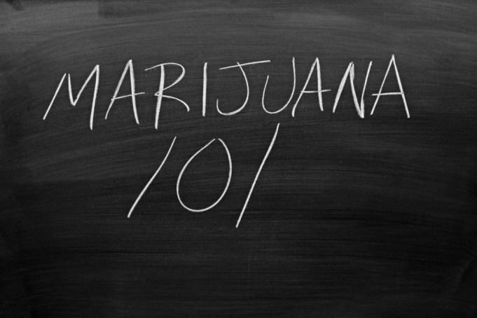 University of Northern Michigan Marijuana Studies