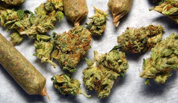 Marijuana New Jersey Legalization