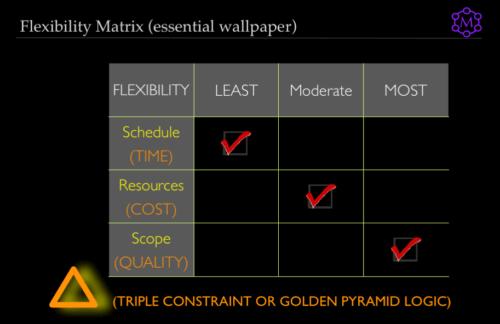 Illustrative Flexibility Matrix, time cost