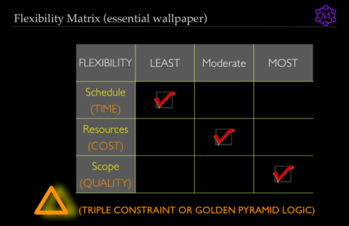 Illustrative Flexibility Matrix, time cost