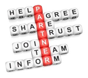 Facilitative Leadership, Novice Facilitators